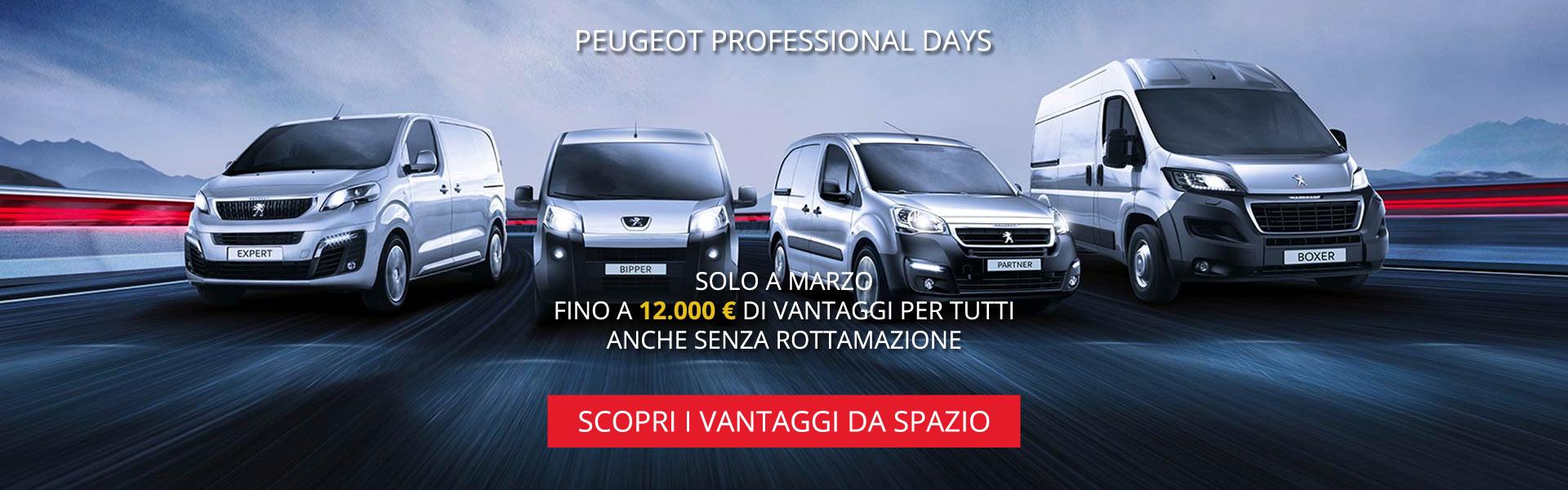 Peugeot Professional Days