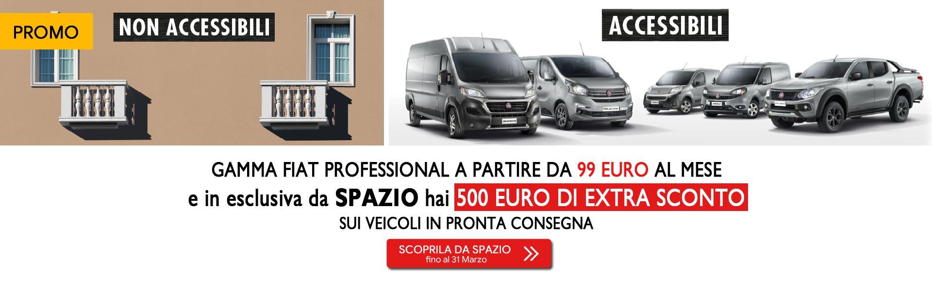 Gamma Fiat Professional